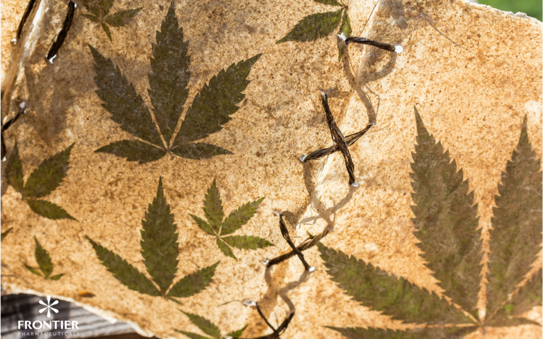 History of cannabis – a short journey